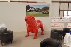Bulldog inglese - 4
