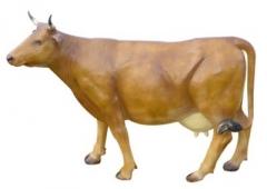 c211d-155x216cm